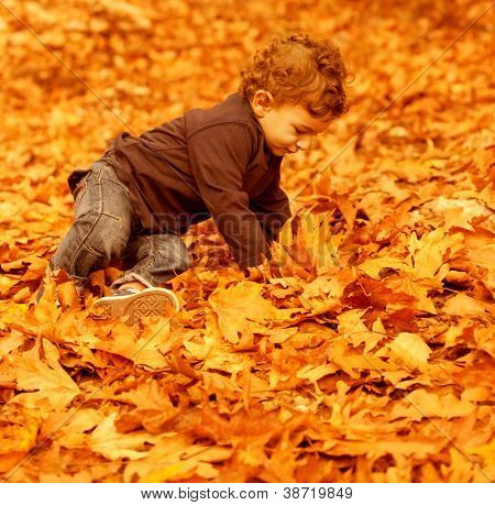 Photo of cute little boy having fun in autumn park, pretty child sitting on dry old orange foliage in woods, small kid playing with fall trees leaves in the forest, happy and carefree childhood