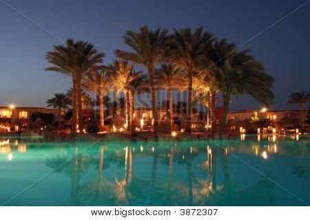 Evening Open Air Pool With Palms Around