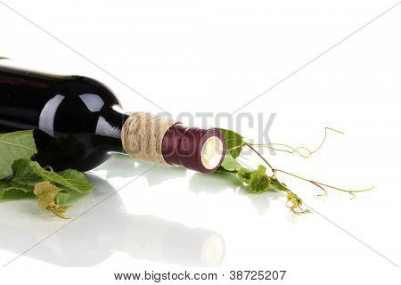 bottle of wine with grape leaves isolated on white