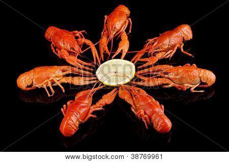 Tasty boiled crayfishes isolated on black