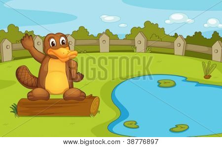 Illustration of a platypus on a log
