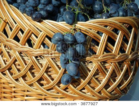 Woven Basket With Blue Grapes