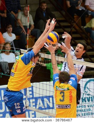 KAPOSVAR, HUNGARY - OCTOBER 5: Andras Geiger (white 7) in action at a Middle European League volleyball game Kaposvar HUN (w) vs Posojilnica AUT (y), October 5, 2012 in Kaposvar, Hungary