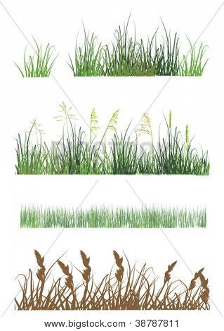 illustration with grass strips isolated on white background