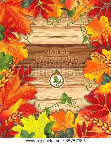 Seamless background from autumn maple leaves. Happy Thanksgiving beautiful card with Place for your text.