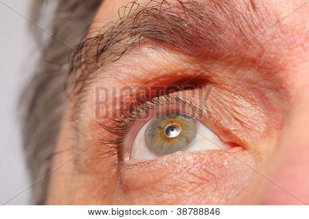eye of man, eyebrows, eyelashes, macro, focus on eye