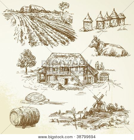 paisaje rural, agricultura, agricultura