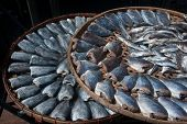 stock photo of threshing  - Outdoor Sun Fish In Threshing Basket  - JPG