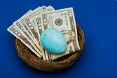 image of nest-egg  - Stack of twenty dollar bills sitting in nest with egg on blue background nest egg - JPG