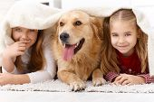 Cute little girls having fun with golden retriever, mentira propensa en planta en el país bajo una manta, smil