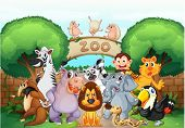pic of hippopotamus  - illustration of zoo and animals in a beautiful nature - JPG