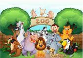 Постер, плакат: Иллюстрация зоопарк и животных в прекрасной природы