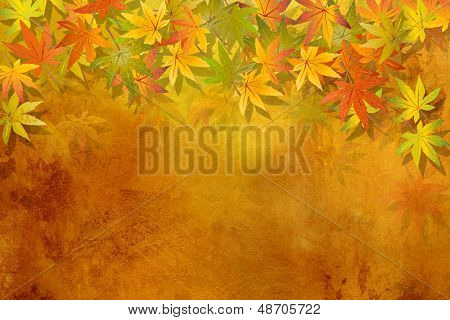Fall leaves - autumn background
