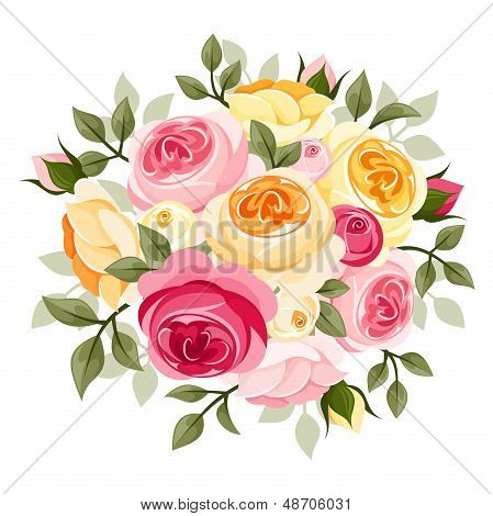 Pink and yellow roses. Vector illustration.