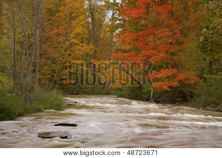 Brandywine Falls River In Autumn