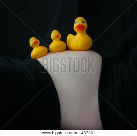 Tres patos de juguete en la barriga