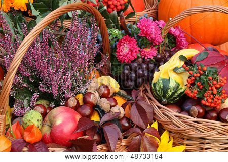 Colorful Autumn Stuff