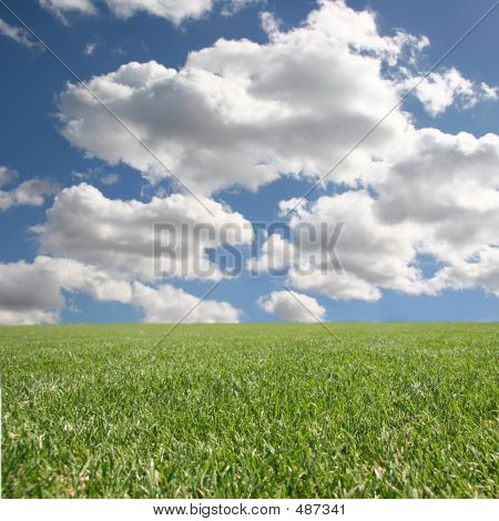 Bright Beautiful Clean Outdoor Grass And Sky Insert Your Isolated Child Or Client