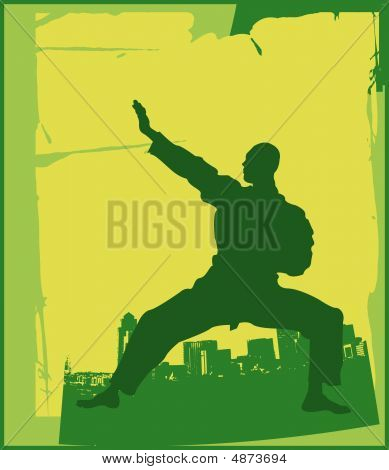 Karate pose