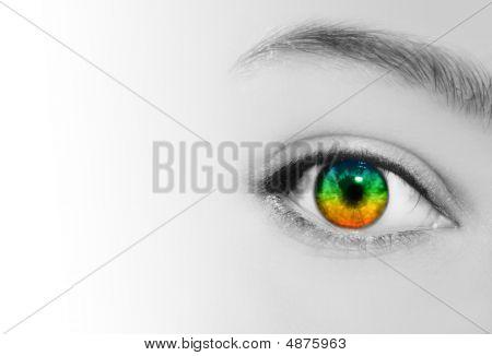 Rainbow Eye Vision Perspective