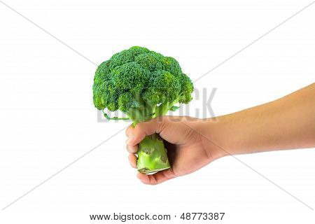 Have Broccoli