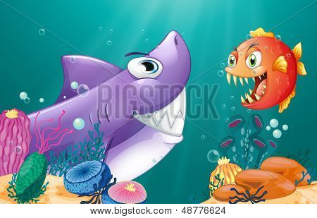 Illustration of a shark and a piranha under the sea