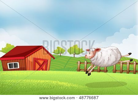Illustration of a sheep jumping in front of a barn