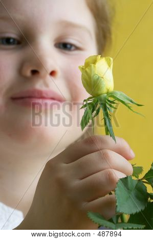 Bezaubernde Blumen