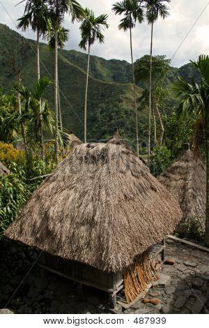 Ifugao Huts