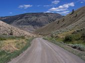 picture of cariboo  - Traveling from one dessert region to another - JPG