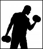 picture of weight lifter  - A male weight lifter who is very strong - JPG