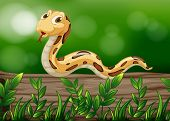 stock photo of jungle snake  - Illustration of a snake above a wood - JPG