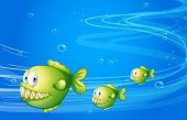 stock photo of piranha  - Illustration of the three green piranhas under the sea  - JPG