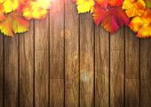 stock photo of wooden fence  - Nature autumn sale design background with space - JPG