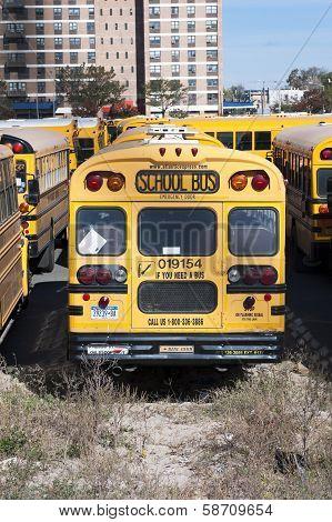 A New York City School Buses.