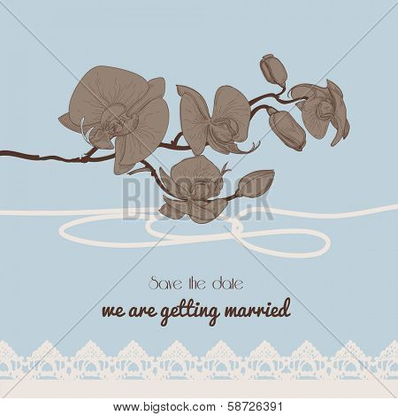 Vintage style wedding invitation, orchid twig and old-fashioned lace border