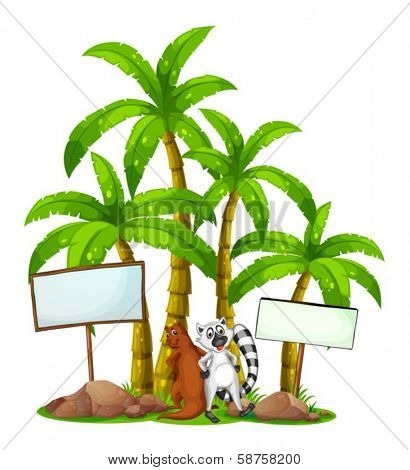 Illustration of a lemur and a sealion in the middle of the empty boards on a white background