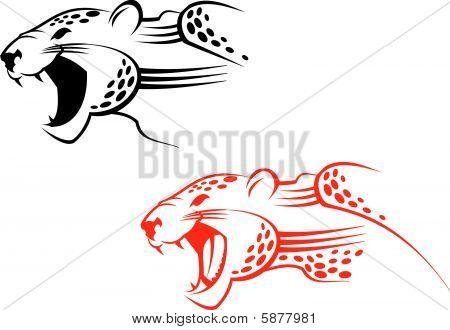 Wildcat sign