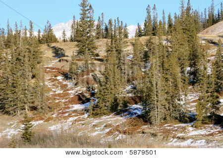 winter in jasper national park, alberta, canada