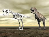 picture of dinosaur skeleton  - Tyrannosaurus rex next to its skeleton on the ground by cloudy day - JPG