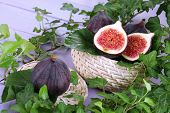 Ripe figs in basket in leaves on wooden table close-up