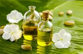 stock photo of massage oil  - White flower with set of stones  - JPG