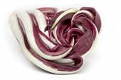 Radicchio Rosso di Treviso on white background