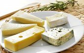 picture of brie cheese  - closeup of a plate with an assortment of cheese - JPG