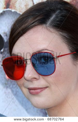 LOS ANGELES - JUL 16:  Amber Tamblyn at the 'Twin Peaks - The Entire Mystery' Blu-Ray/DVD Release Party And Screening at the Vista Theater on July 16, 2014 in Los Angeles, CA