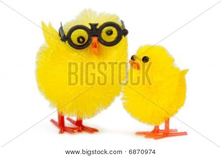 Baby Chick With Funny Older Brother