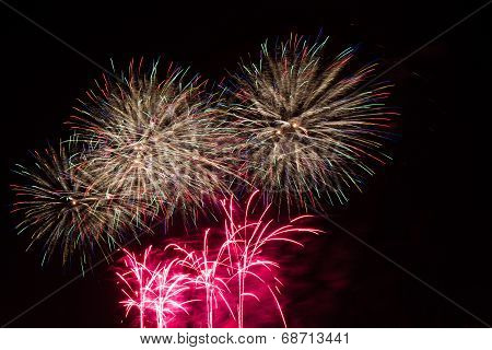 Colorful Firework