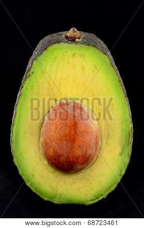 Hass Avocado