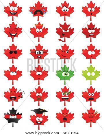 Maple-leaf-shaped smiles
