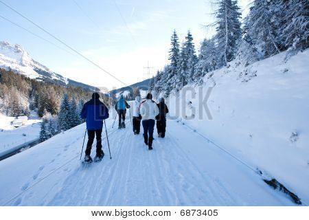 Group Walking In The Snow